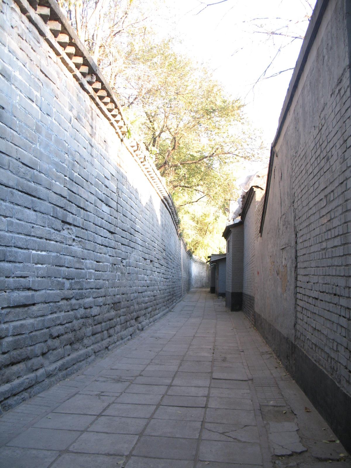 北京的早晨(五)胡同篇图片