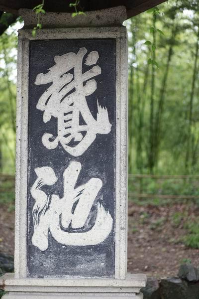 赞汉字笔画 中国老年吧
