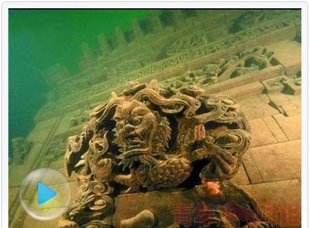 世界上最大千年乌龟