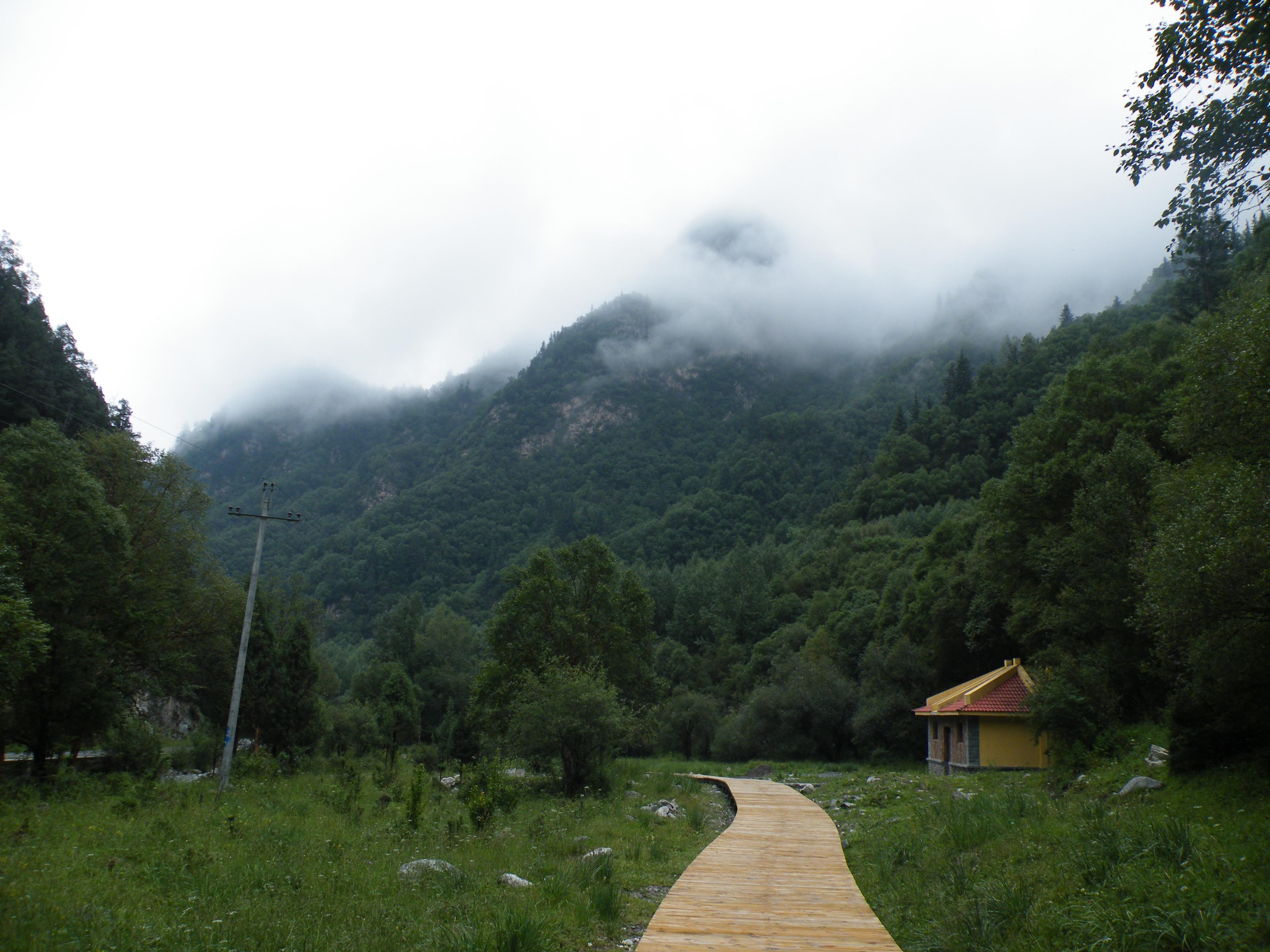 西宁东边互助北山国家森林公园内  坐着观光车上行驶在森林公园内
