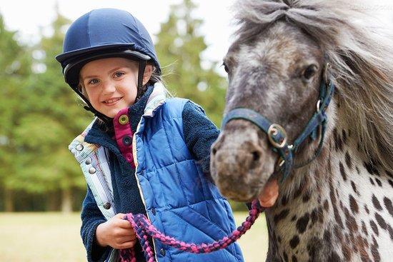 带孩子骑马去!