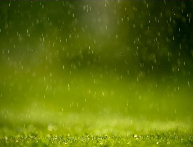 润泽瑜伽苑# 今天是春天的第一场雨