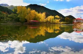 亚洲成人�_妫河森林公园-伏象园