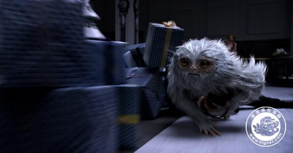 「沃·首映」《神奇动物在哪里》11.24魔法世界 奇幻再续