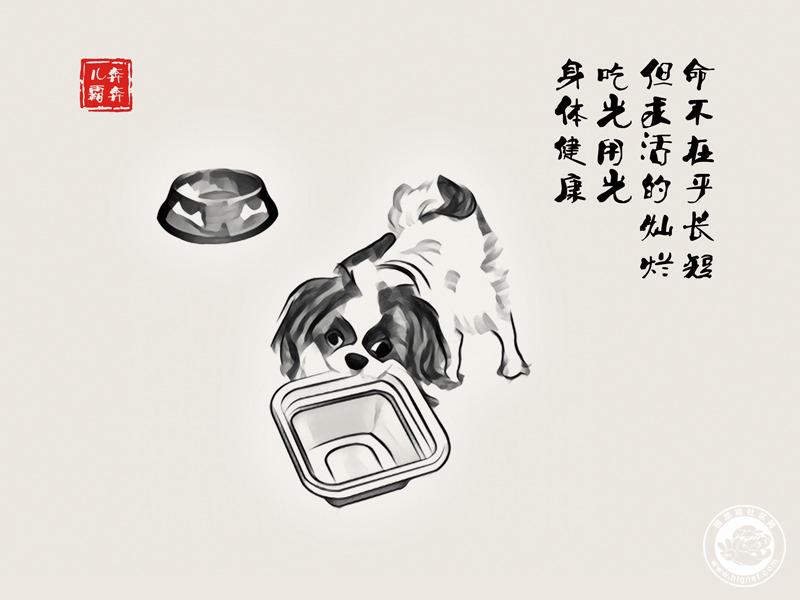 09饭盒.jpg