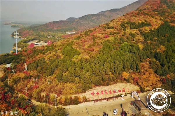 蟒山国家森林公园是北京面积最大的森林公园,各类树木花卉众多,秋天