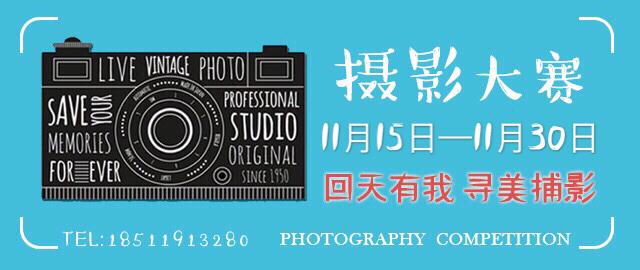摄影大赛小图.JPG
