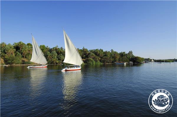 埃及, 阿斯旺, 尼罗河神象岛周围的帆船2.jpg