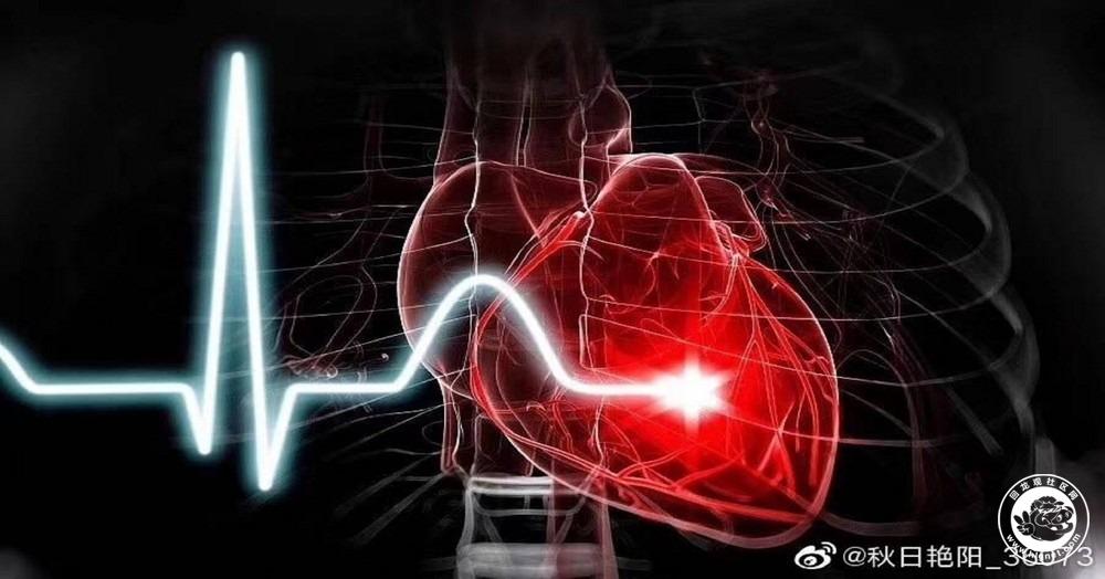 心脏图片.jpg