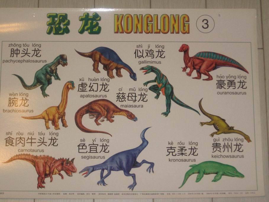 的恐龙拥有更多的 种类   恐龙分类资料大全 - 421220984