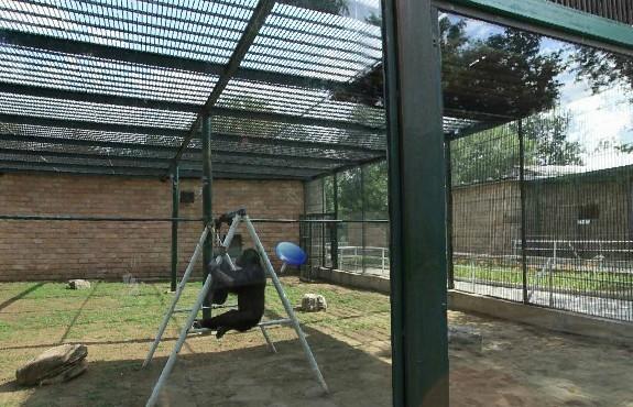 八达岭野生动物园,昌平国际草莓节