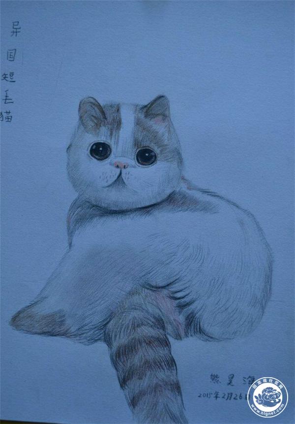 回龙观少年美术培训立体彩铅素描水粉