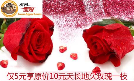 仅5元享原价10元天长地久玫瑰一枝