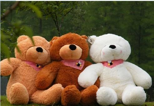 有两种泰迪熊毛绒玩具
