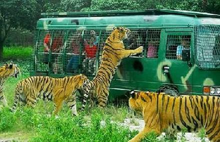 北京动物园门票是多少图片1