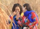 洛河湿地景宜人,引来美女拍写真: